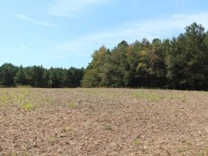 UNDER CONTRACT!  29 Acres of Residential Farm and Hunting Land For Sale in King and Queen County VA!