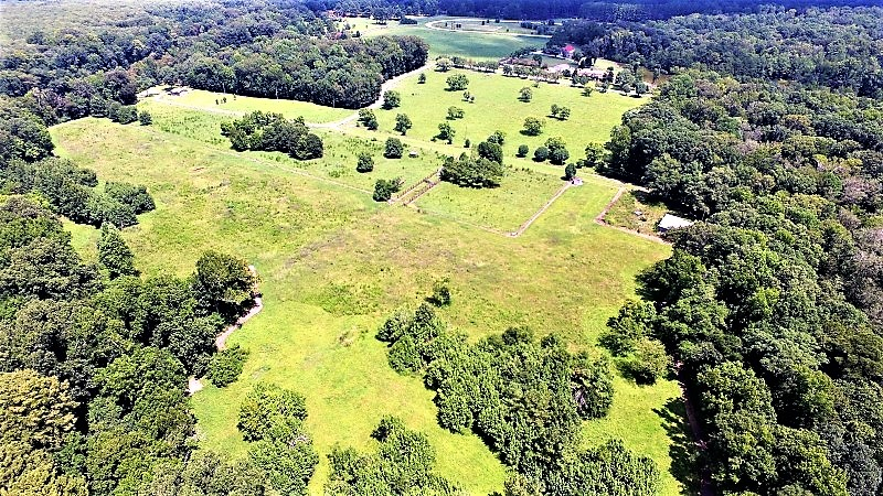 SOLD!  85 Acres of Farm Land For Sale in Pitt County NC!