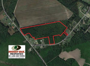 SOLD!  19.26 Acres of Residential Hunting Land For Sale in Robeson County NC!
