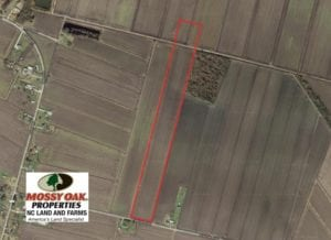 SOLD!  25 Acres of Farmland For Sale in Hyde County NC!