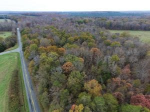 UNDER CONTRACT!  42 Acres of Hunting and Timber Land For Sale in Buckingham County VA!