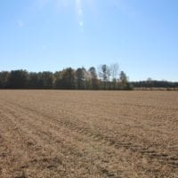 SOLD! 36 Acres of Prime Farm and Timber Land Land For Sale in Sampson County NC!