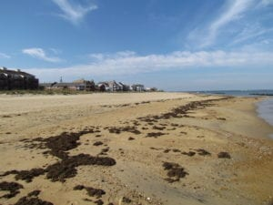 UNDER CONTRACT!  0.17 Acre Waterfront Residential Lot For Sale in Norfolk VA!