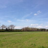 SOLD!  13 Acres of Farm and Timber Land For Sale in Camden County NC!