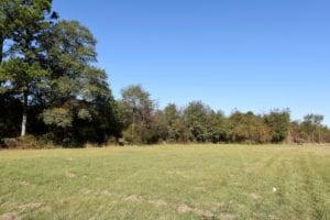 SOLD!  16 Acres of Residential Hunting Land For Sale In Duplin County NC!