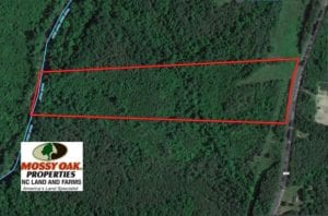 SOLD!  14.34 Acres of Hunting Land with Homesite For Sale in Person County NC!