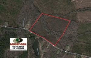 UNDER CONTRACT!  25.50 Acres of Hunting and Recreational Land For Sale in Dinwiddie County VA!
