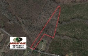 UNDER CONTRACT!  7.73 acres of Residential and Hunting Land For Sale in Dinwiddie County VA!