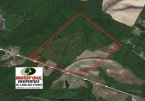 SOLD!  60 Acres of Farm Timber and Hunting Land For Sale in Pitt County NC!