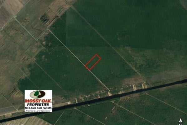 SOLD! 60 Acres of Bear and Deer Hunting Land For Sale in