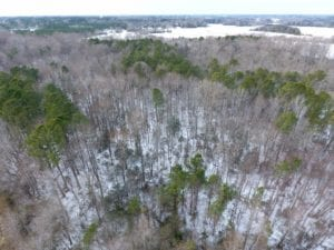 SOLD!  26.89 Acres of Residential and Timber Land For Sale in Edgecombe County NC!