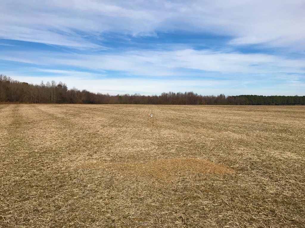 SOLD!  62.5 Acres of Farm and Timber Land For Sale in Wayne County NC!