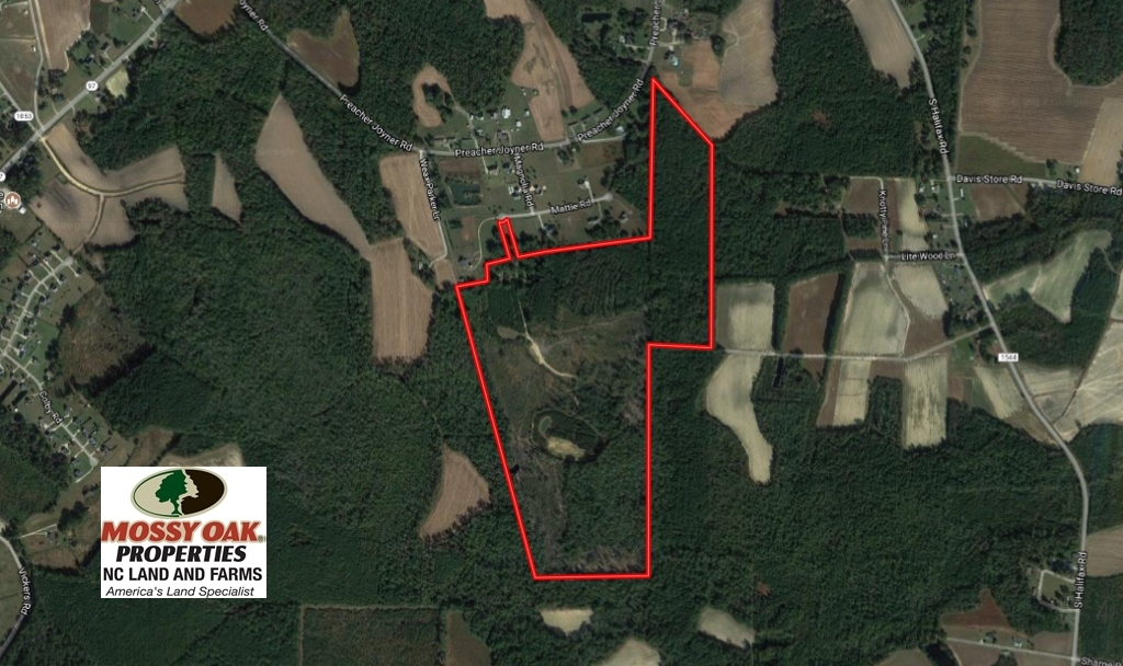 SOLD!  100 Acres of Hunting and Timber Land For Sale in Nash County NC!