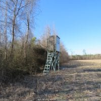 SOLD!  70 Acres of Farm and Timber Land For Sale in Hoke County NC!
