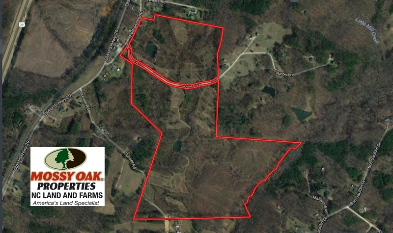 SOLD!  138.95 Acres of Hunting Land For Sale in Caswell County NC!