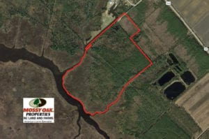 SOLD!  65 Acres of Waterfront Land For Sale in Hyde County NC!