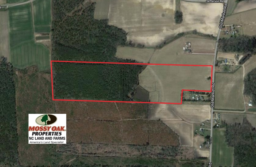 SOLD!  56.35 Acres of Farm and Timber Land For Sale in Edgecombe County NC!