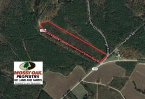 UNDER CONTRACT!  13.79 Acres of Timber and Residential Land For Sale in Warren County NC!