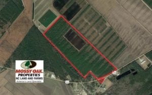 SOLD!  151 Acres of Duck Hunting Land with Home Site in Hyde County NC!