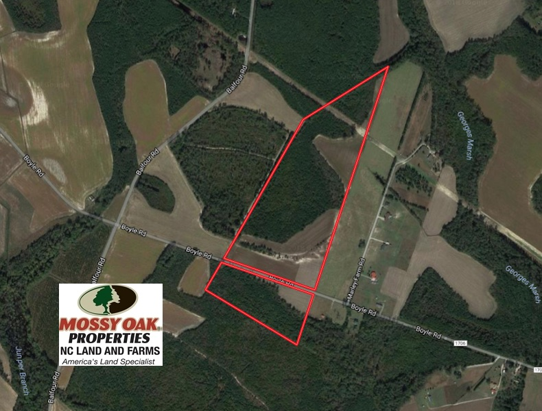SOLD! 70 Acres of Farm and Timber Land For Sale in Hoke
