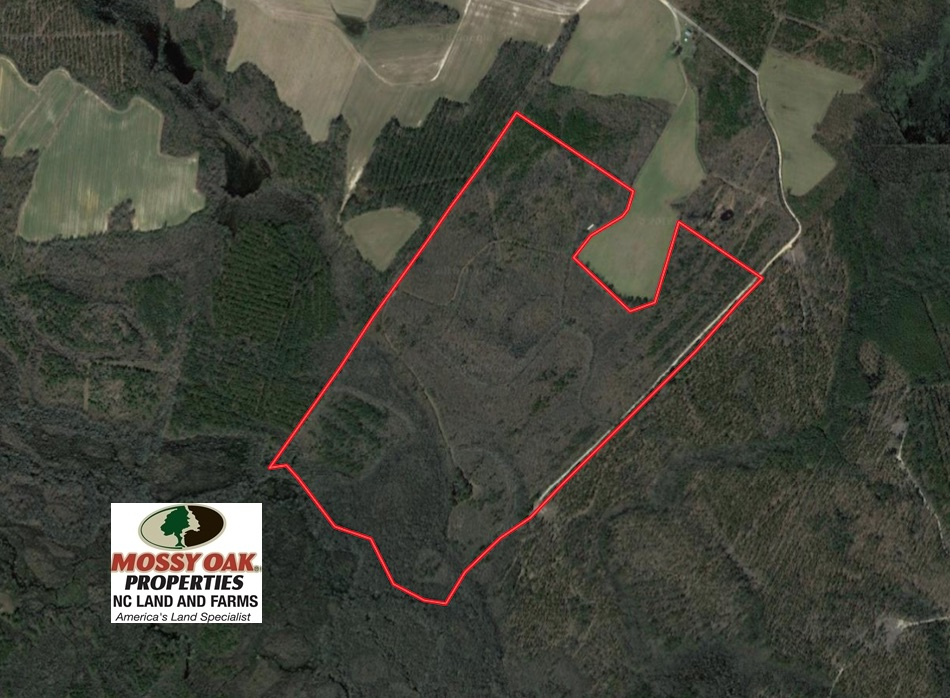SOLD!  167 Acres of Hunting Land For Sale in Halifax County NC!