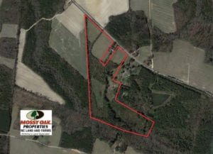 SOLD!  33.51 Acres of Farm and Hunting Land for Sale in Halifax County NC!