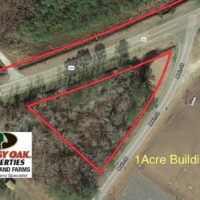 REDUCED!  151 Acres of Duck Hunting Land with Home Site in Hyde County NC!