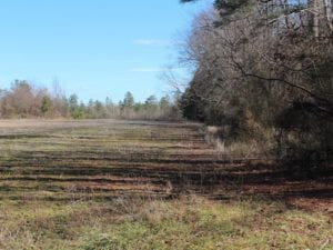 UNDER CONTRACT!  67 Acres of Recreational and Farm Land For Sale in Sussex County VA!