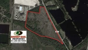 SOLD!  34.98 Acres of Residential Hunting and Timber Land For Sale in Robeson County NC!