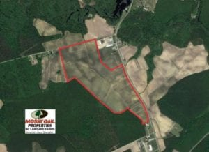 SOLD!  130 Acres of Prime Farm and Commercial Land For Sale in Jones County NC!