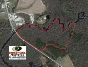 SOLD!  43.7 Acres of Hunting Land For Sale in Gates County NC!
