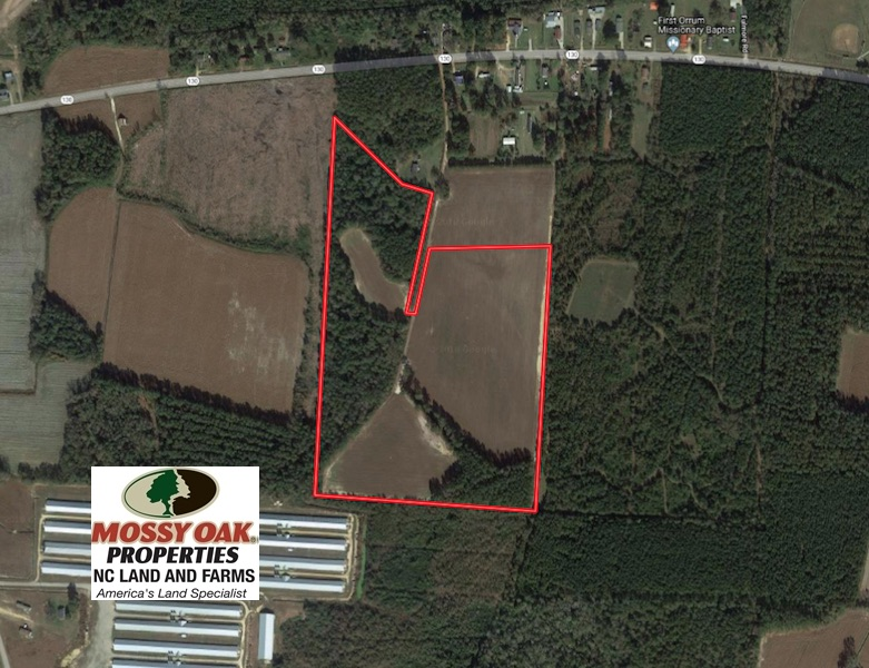 SOLD!  36 Acres of Farm and Timber Land For Sale in Robeson County NC!