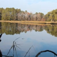 SOLD! 98 Acres of Waterfront Land For Sale in Isle of Wight County VA!