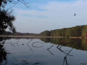 UNDER CONTRACT!  98 Acres of Waterfront Land For Sale in Isle of Wight County VA!