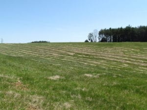 72 Acres of Riverfront Pasture Land with Home For Sale in Buckingham County VA!