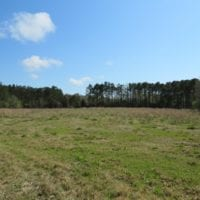 138 +/- Acres of Farm and Timber Land For Sale in Brunswick County NC!