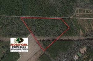 SOLD!  34 Acres of Timber and Hunting Land For Sale in Pamlico County NC!