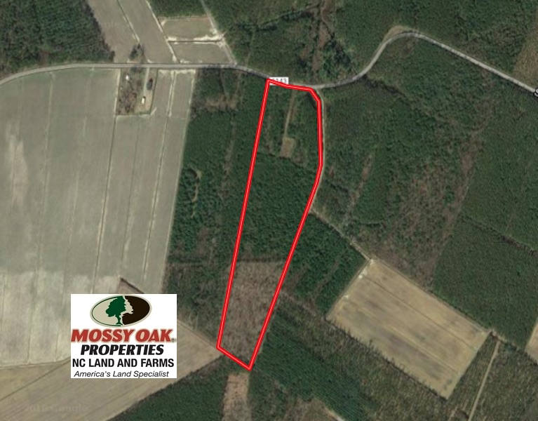 SOLD!  25.13 Acres of Affordable Clear Cut Timber Land For Sale in Hyde County NC!