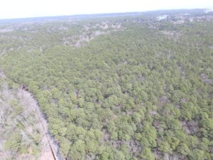 UNDER CONTRACT!  77 Acres of  Hunting and Investment Land for Sale in Mathews County VA!