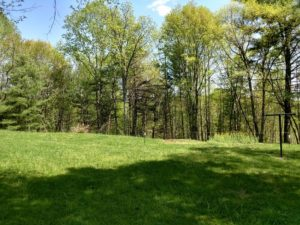 UNDER CONTRACT!  10 Acres of Residential Hunting Land For Sale in Amherst County VA!