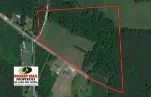 SOLD!  22 Acres of Timber and Pasture Land For Sale in Granville County NC!