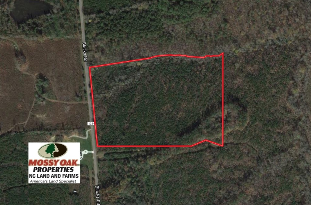 SOLD!  25.04 Acres of Hunting Land For Sale in Warren County NC!
