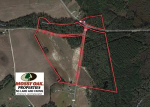 SOLD!  91 Acres of Farm and Timber Land For Sale in Robeson County NC!