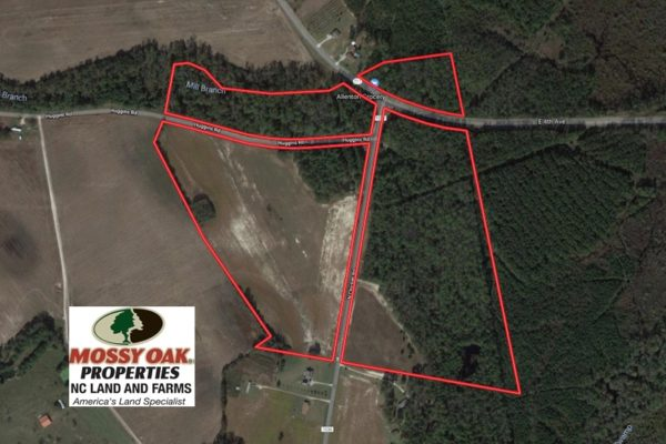 91 Acres Of Farm And Timber Land For Sale In Robeson County Nc