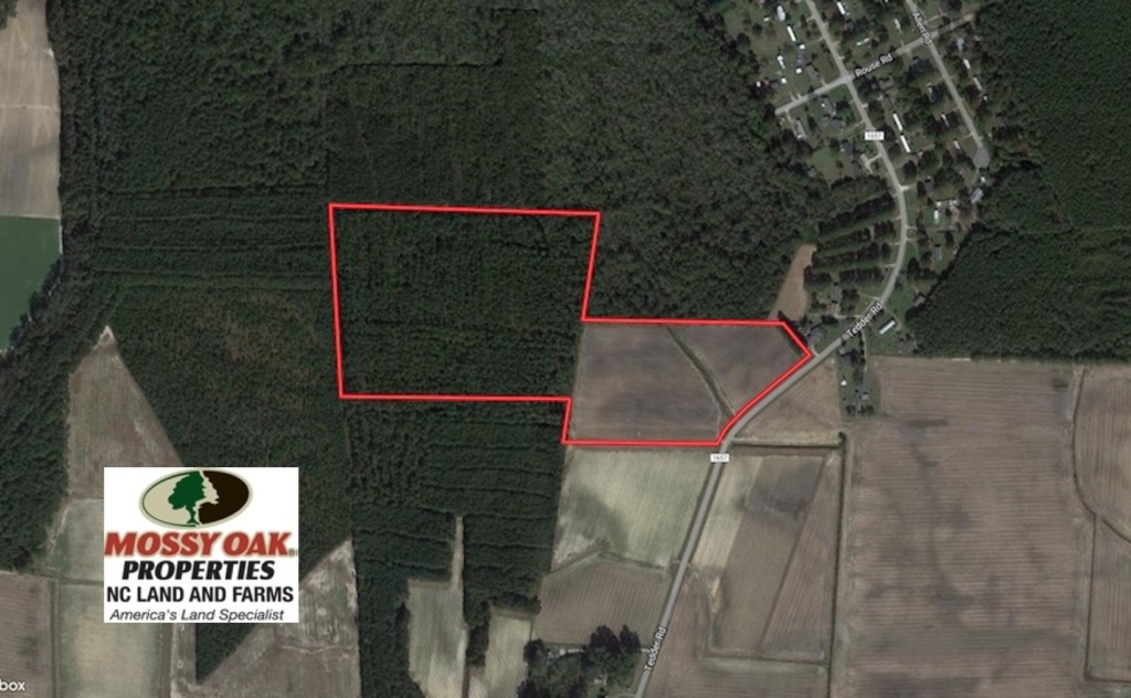 SOLD!  33 Acres of Hunting and Timber Land For Sale in Wilson County NC!