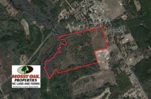 SOLD!  67.61 Acres of Hunting and Residential Land for Sale in Scotland County NC!