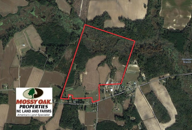 SOLD!  113 Acres of Farm and Timber Land For Sale in Robeson County NC!