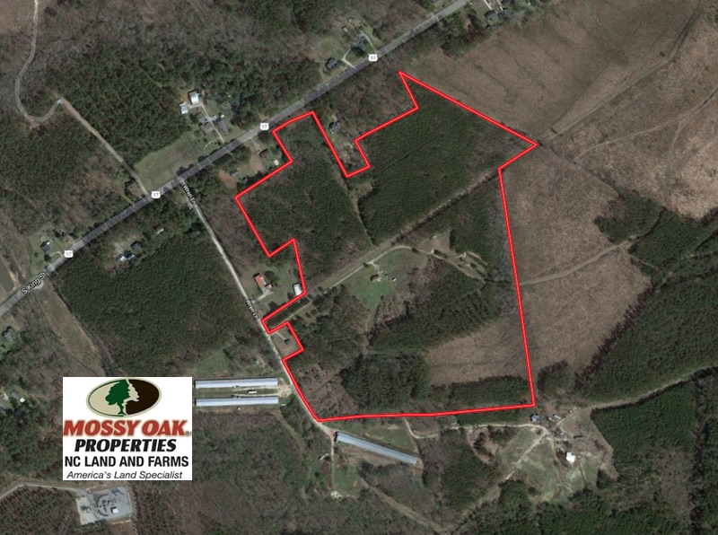 SOLD!  59 Acres of Hunting and Timber Land with Home For Sale in Bertie County NC!