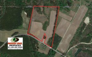 SOLD!  36 Acres of Hunting and Farm Land For Sale in Northampton County NC!