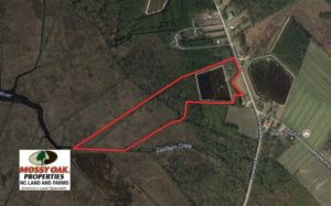 SOLD!  Duck Impoundment and Hunting Land For Sale in Pamlico County NC!